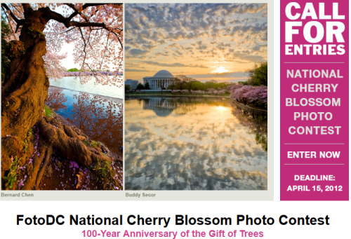 WaPo reports that DC's cherry blossom's bloom date has been moved up for the second time by the National Park Service. The famed trees will begin blooming much earlier than normal due to a very warm winter. More on the contest, here.