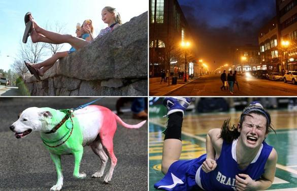 Globe staff photos of the week  - The top picks of this week included scenes of sunny days, dark nights, hard falls, and a festive canine.