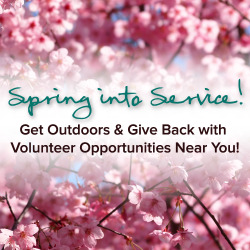 Spring into service! Our latest volunteer bulletin has tons of great local volunteer opportunities that will cure your cabin fever!