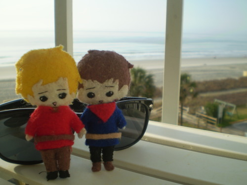 Merlin and Arthur are really enjoying their spring break on the beach. :)