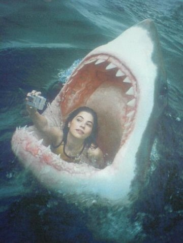 omg getting eaten by a shark guys NBD