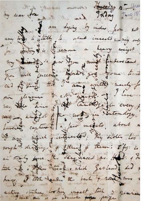 Charles Darwin Cross writing (technique used for saving paper), 1828My dear Fox  I am dying by inches, from not having any body to talk to about insects: — my only reason for writing, is to remove a heavy weight from my mind, so now you must understand, what you will perceive before you come to the end of this; that I am writing merely for my own pleasure & not your's. — I have been very idle since I left Cambridge in every possible way & amongst the rest in Entomology. I have however captured a few insects, about which I am much interested: My sister has made rough drawings of three of them…