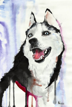 "kinovich:  ""husky"" watercolor, ~2 hours"