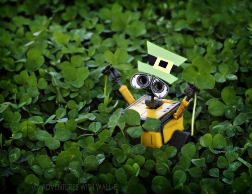 Happy St. Patrick's Day! http://adventureswithwalle.tumblr.com/