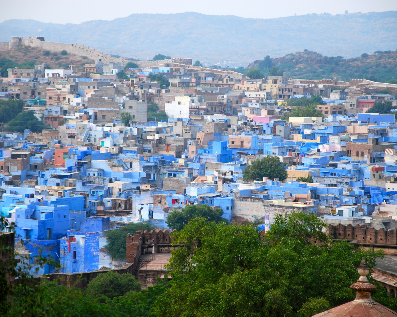 beautiful blue Jodhpur
