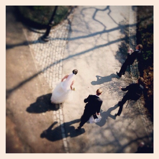Somebody down there got married #birdseye #wedding #shadows #seenonmyrun (Taken with Instagram at Central Park - Bridle Path)