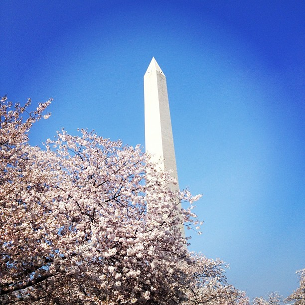 Washington monument (Taken with instagram)