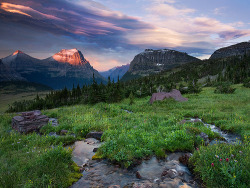 torace:  PARADISE STORM — Glacier National Park, MT (by Light of the Wild)