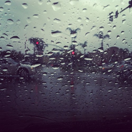 "thisissandiego:  hautetropique:  Rain (Taken with instagram)  all day  HA! Last week, my sister blamed me. ""it's only raining because you're visiting - it never rains here""..I've been home a week. My rainmaker powers are no longer in effect."