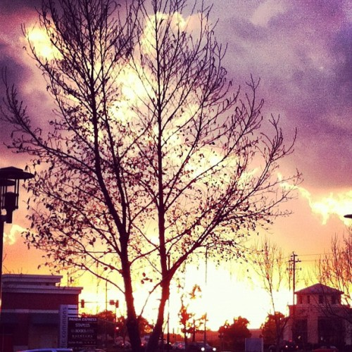 #Suburban #Sunset through the #buildings, #trees and #clouds.  #ChasingLight (Taken with instagram)