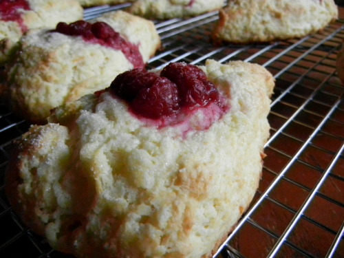 Growing up, my twin sister and I got into a scone frenzy. This kind of thing happened occasionally. We got into this funk where we had to make one particular type of food over and over and over. Luckily, this did include variations of the food. Our scone frenzy included a small scone book which we went through and bookmarked all the recipes we wanted to try. I wish I remembered the name of it, the cookbook was small with violets all over the book sleeve and a teatime set up on the front. After making all those scones my favorite scones are still Raspberry scones. You can never go wrong with too many raspberries. I like my scones crunchy on the outside and soft and airy, but still a bit flaky on the inside so these scones came out perfect. I changed the recipe a bit… I had Greek yogurt in my fridge but no whole milk and when in doubt ALWAYS substitute yogurt for cream. In my scone excitement I also forgot to put in almond slices which would have been a very good addition. I finally got to use the vanilla extract I made and oh my lord! It is so good. Greek Yogurt and Vanilla Raspberry Scones 2 cups flour 1/4 cup sugar 1 1/2 tsp baking powder 1/4 tsp baking soda 1/4 tsp salt 8 tbs (1 stick) butter cut into small pieces 1/2 cup Greek yogurt 1 large egg 1 tsp vanilla 1/4 cup frozen or fresh raspberries Preheat the oven to 400 f degrees In a large bowl, combine flour, sugar, baking powder, baking soda, and salt. Cut in cold butter till it resembles small pebbles. In a separate bowl, beat the egg, vanilla and Greek yogurt together. Pour the wet mixture over the dry mixture and stir together until it is just combined and the dough has formed a ball. If the dough seems a bit too dry, add a little bit more yogurt or some milk. Cover a baking sheet with parchment paper. Dust your hands with some flour and pick up the ball of dough. Pat it into a thick disk on the parchment paper and cut the scones into 8-10 scones like you would a pizza. Gently separate the scones from the disk so there is space between the scones and they won't get stuck together when they bake. Push your thumb into the fattest part of each scone and place a couple of raspberries in each hole. Sprinkle the scones with sugar and place in the oven for 15-17 minutes or until a light golden brown. Total Time: About 40 minutes