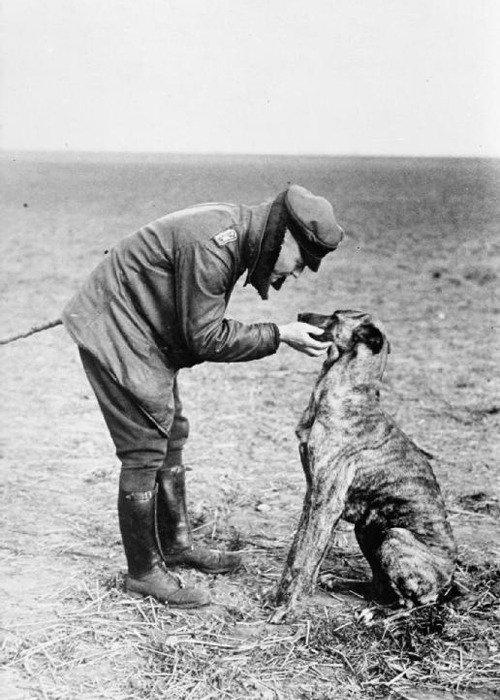 Manfred von Richthofen and his dog, Moritz (via IWM)