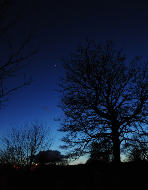 "Venus and Jupiter shine brilliantly The conjunction of Venus and Jupiter has been particularly bright in the sky in the last few days- offering some of the best viewing opportunities of the two worlds in years. The above picture was my view of the sight this evening from my small corner of our planet (taken from the Southern Necropolis, Glasgow, Scotland). Similar scenes can be seen all around the world. Such a sight, like many astronomical images, is a reminder of our insignificance in a cosmological sense. Furthermore, it beautifully conveys the interconnection that we all, as humans and animals on this planet, are bound by. Whoever we are, wherever we are located, we are all looking out at the same sky. I found the following quote from Leo Tolstoy that, I feel, captures this sentiment nicely: ""How good is it to remember one's insignificance: that of a man among billions of men, of an animal amid billions of animals; and one's abode, the earth, a little grain of sand in comparison with Sirius and others, and one's life span in comparison with billions on billions of ages."""