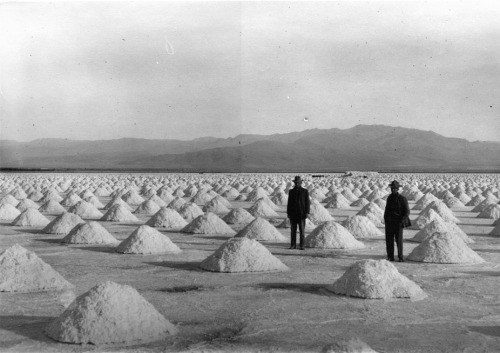 thingsorganizedneatly:  SUBMISSION: Piles of harvested salt in Saline Valley, CA. 1912 or 1913.