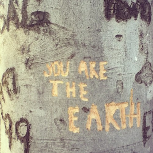 powerinthepeaceful:  you are the earth