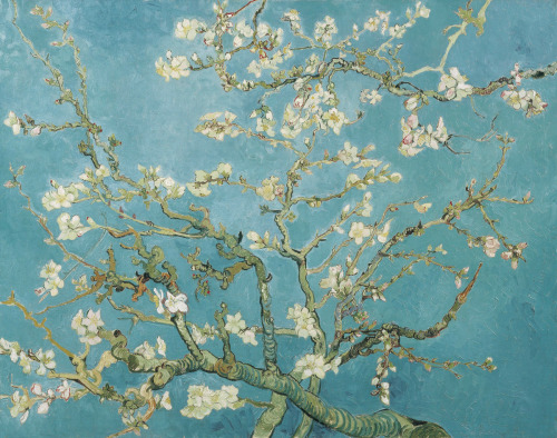 Almond Blossoms, painted by Vincent van Gogh.