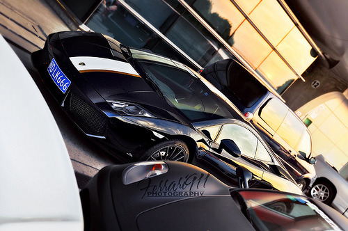 automotivated:  Lamborghini Gallardo LP550-2 (by 李鱼 Ferrari911)