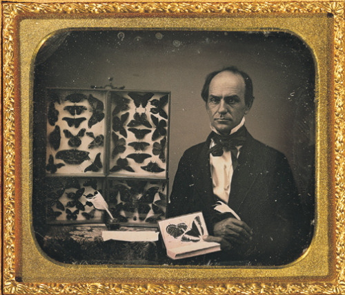 tuesday-johnson:  ca. 1850, [daguerreotype portrait of a gentleman butterfly collector] via the George Eastman House Collection, Still Photograph Archive