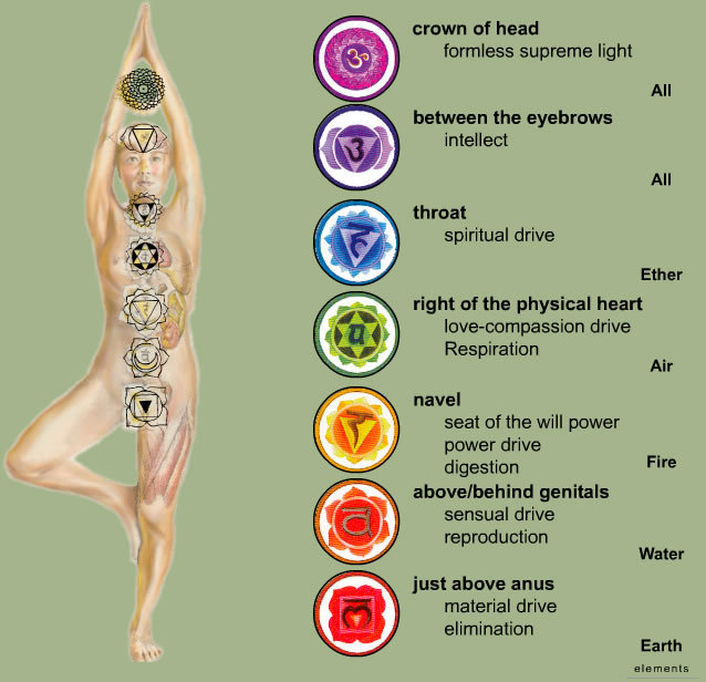 quandric:  The chakras laid out on a body.  This also has the drives they correlate to, in case you forgot from the chakras post.