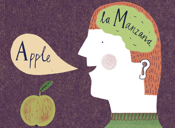 "justojusto:  The Benefits of Bilingualism ""Being bilingual, it turns out, makes you smarter. It can have a profound effect on your brain, improving cognitive skills not related to language and even shielding against dementia in old age"""