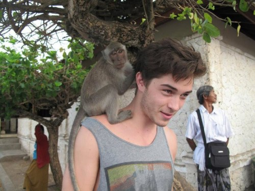 hul-a:  saola:  like-last-summer:  omg can I die now? <3  Monkey+francisco=asdfjkd  ^this equation is correct!