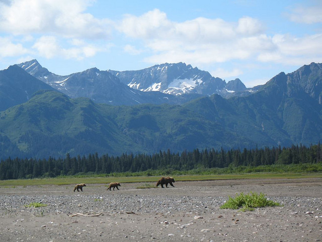 Chinitna Bay, Lake Clark National Park, Alaska