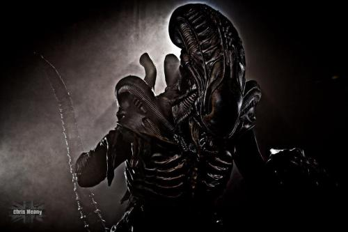 Character: Alfie Xeno - Alien Series Costumer: predpaul Photo by: Chris Meany Photography