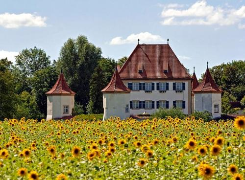 Blutenburg Palace and sunflowers
