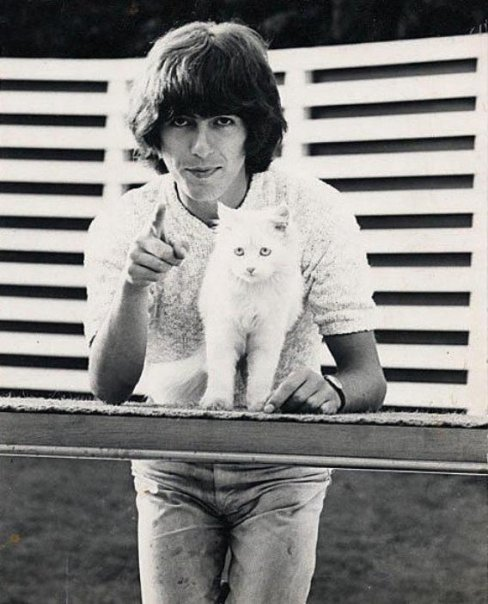 George Harrison with a cat. Need I say more?