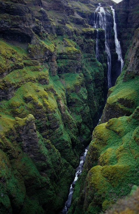 Awesome pic of the Glymur waterfall in the fjord of Hvalfjörður. Glymur (198m) was considered Iceland's highest waterfall until a couple of years ago when a new waterfall emerged from behind a receding part of the great Vatnajökull glacier close to Skaftafell. In a previous post you can see a different angle and read the tales of how Glymur got its name.