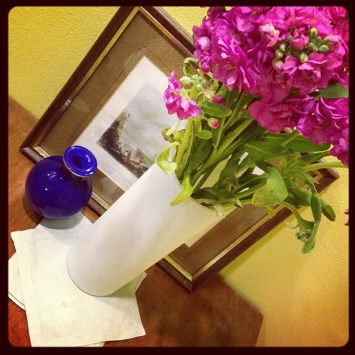Spring stock flowers—I'm on instagram! http://followgram.me/avadesign