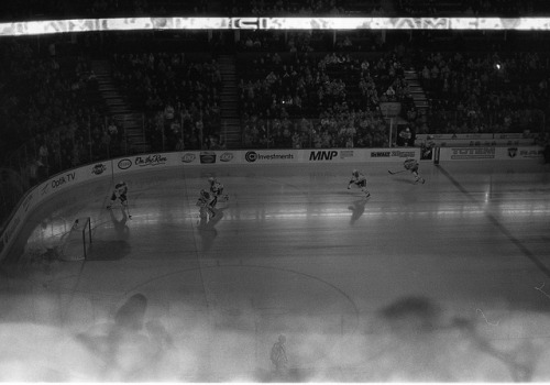 habs on Flickr.