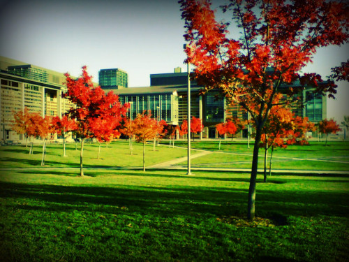 Merced in the fall!! via Befunky iPhone http://goo.gl/jy6LM