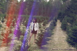 Christmas Tree Farm  «Royal T Photography»