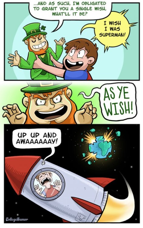 The Leprechaun's Wish