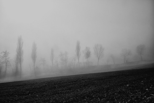 Fog #3 by Fabrizio Olivi on Flickr.