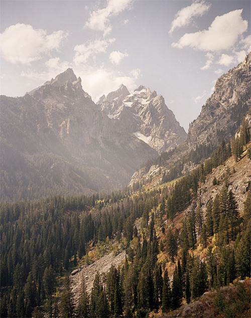 lellite:  Tetons by Mike Friberg on Flickr.
