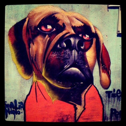 #Graffiti #Dog 1 #Streetart  (Taken with Instagram at La Conchita)