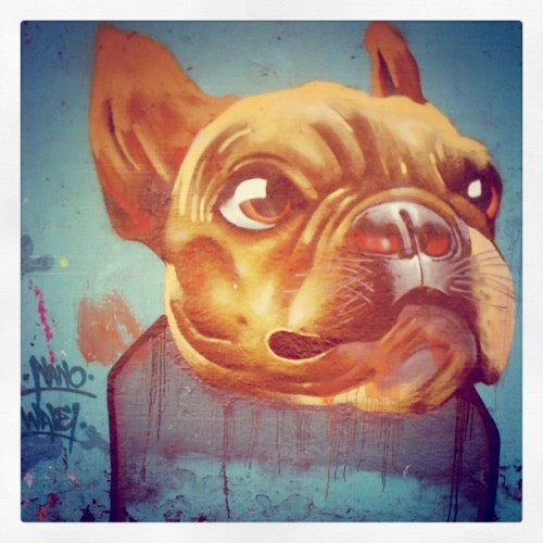 "#graffiti #Dog 2  (Taken with Instagram at ""El Cuernito"")"
