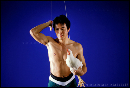 Qi YuWu on wires with chicken, 881 set, Singapore on Flickr.Old stuff of mine…