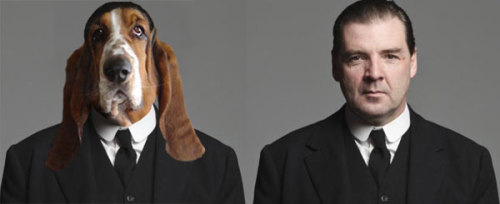 wellthatsadorable:  vanityfair:  Oh my God. Downton Abbey as Dogs, where have you been all our lives?   Downton Abbey dogs, you're all I have been waiting for and I didn't even know it.