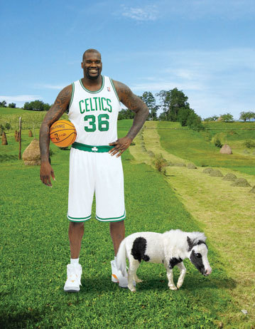 IT'S SHAQ WEDNESDAY!!! Shaq meeting Li'l Sebastian.