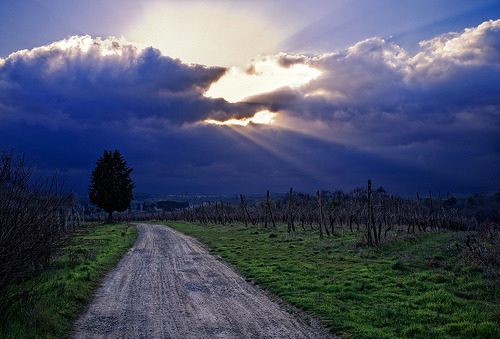 "travel-desires:  ""Afternoon Stroll"" - San Piero, 18 Marzo 2012 (by pigianca)"