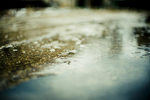 Wet by A. Aleksandravičius on Flickr.