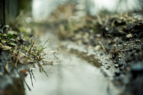 Small River by A. Aleksandravičius on Flickr.