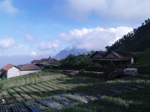 sebelum pendakian, merbabu on Flickr.that time, i'd never thought we are separated like this