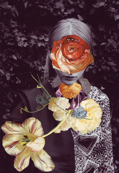pulmonaire:  Collage by Ashkan Honarvar