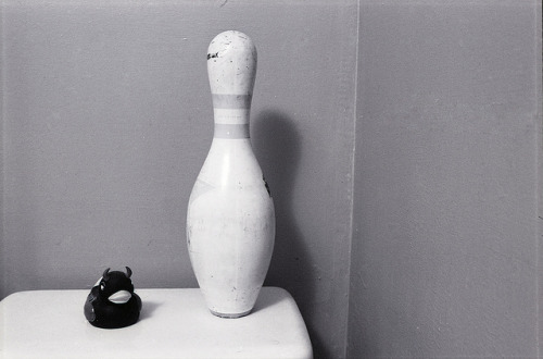 "Day 058/365 - Devil Duck and Bowling Pin on Flickr.Sounds like a Sitcom - or a cop show.  ""… . Together, they fight crime!"""