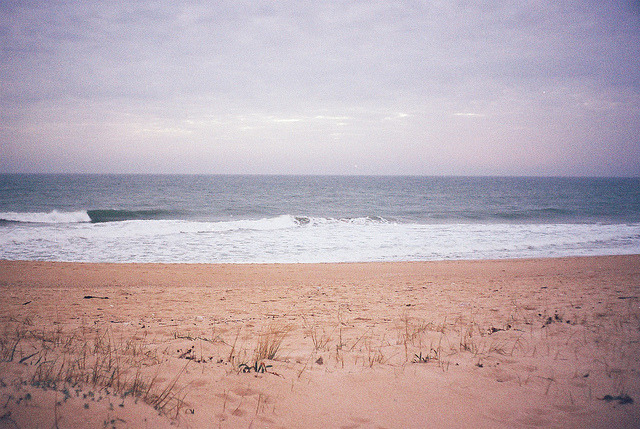 the-confines-of-fear:  untitled by Joana Rosa Bragança on Flickr.