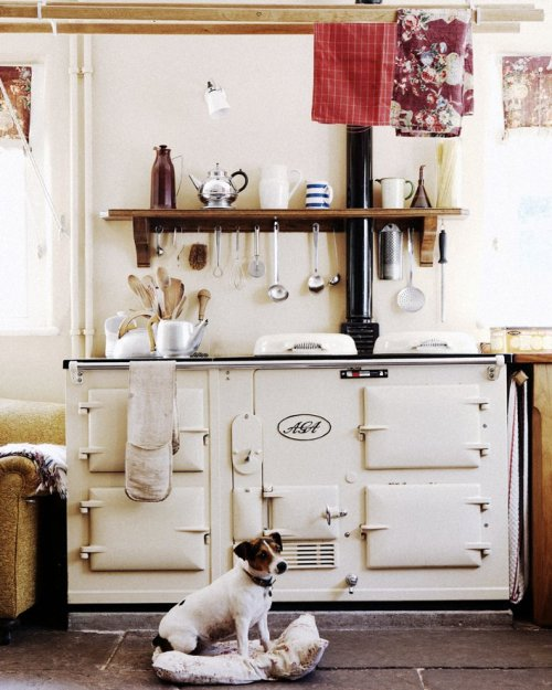 thatkindofwoman:  Stove & Pup appreciation post.